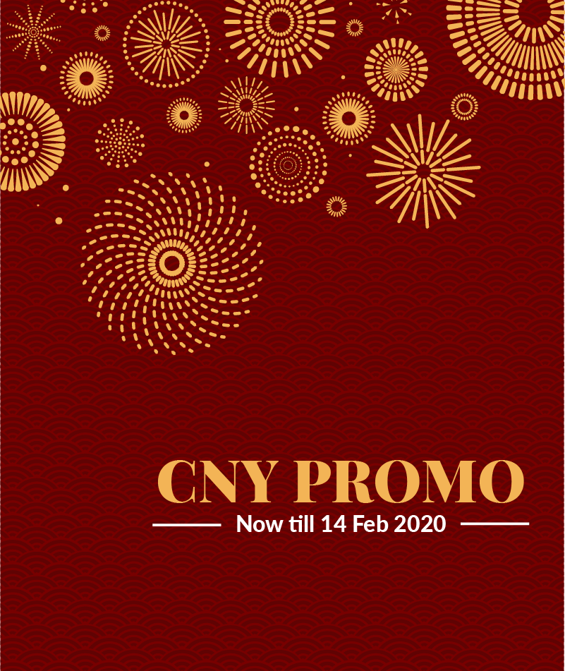 Lunar New Year Promo 2020